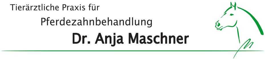 Pferdezahnarzt Maschner